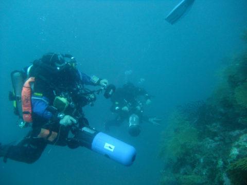 Deeptek à Palmes 2012 – Le CR !!!