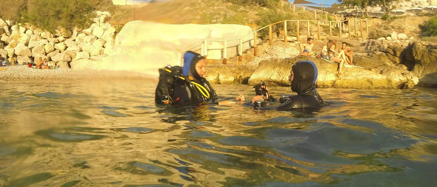 Immergez-vous dans la première communauté francophone de plongée du bord