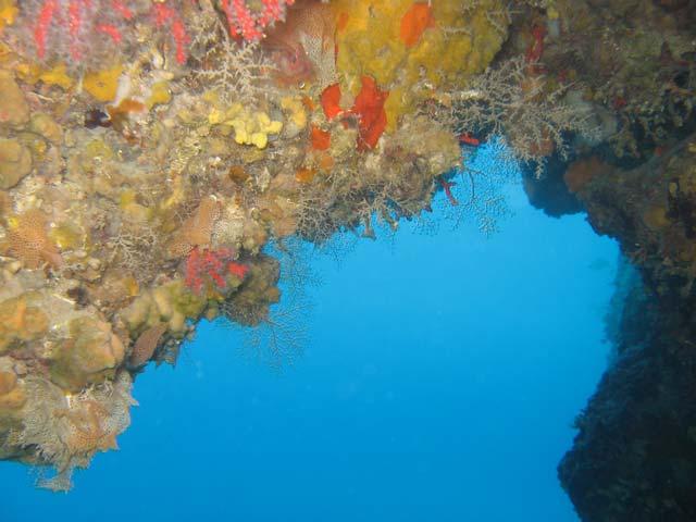 Grotte à corail – Villefranche sur mer