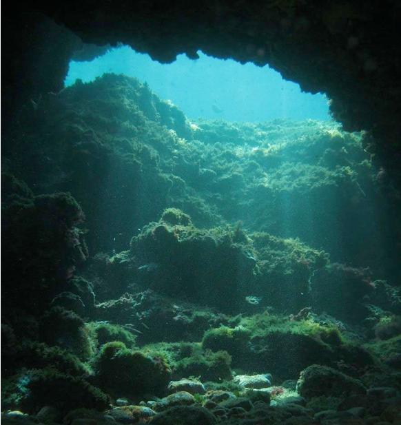 Ambiance de la plongée