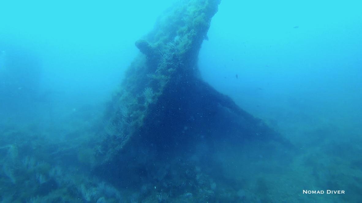 Le Pythéas à Port Vendres 66660